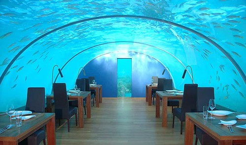 interior-design-under-sea-restaurant-ideas